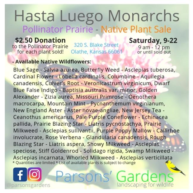 Hasta Luego Monarchs - Native Plant Sale - Parsons' Gardens - 9-22-18