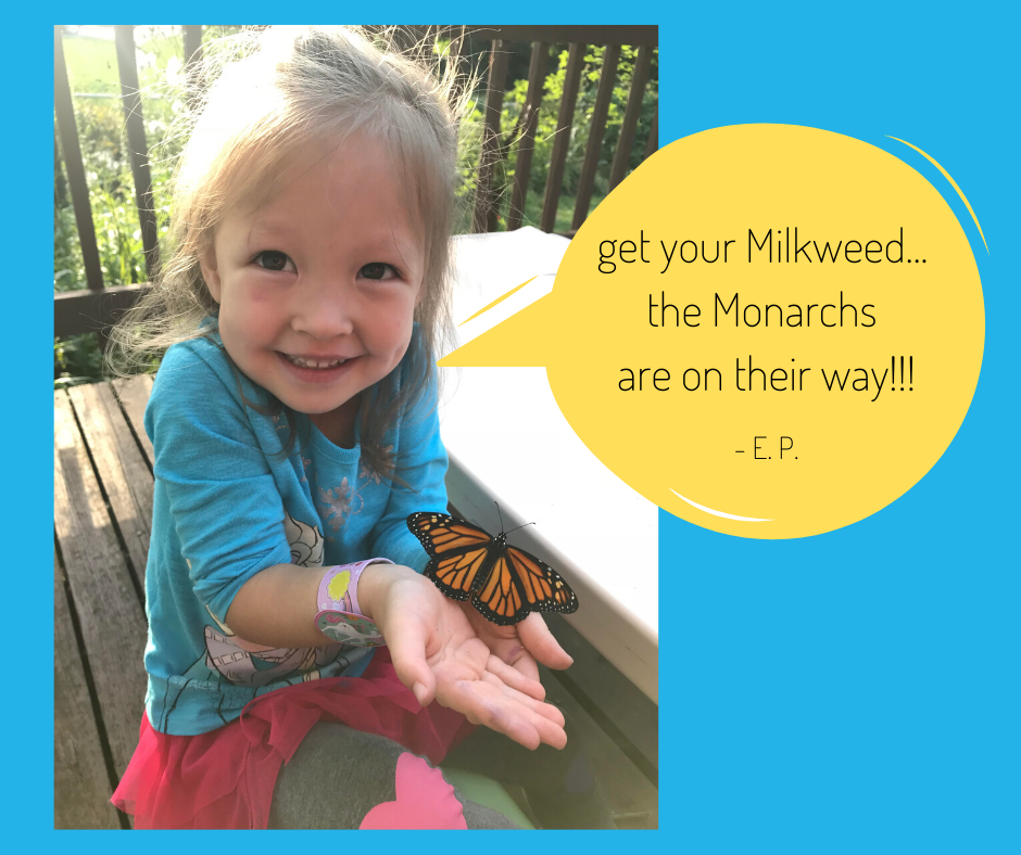 EP - 3 years old - get your Milkweed the Monarchs are on their way!!!